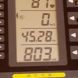 本日の朝練は70分で800キロカロリー超え