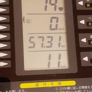 本日の朝練は90分、本来の脂肪燃焼に重点を戻す