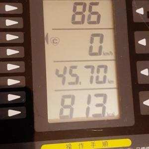 本日の朝練70分、軽く800キロカロリー突破