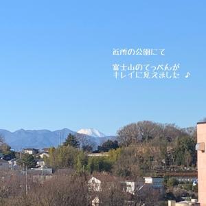 富士山がくっきりと ♪