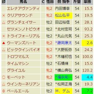 キーンランドS & 新潟2歳S【2019】予想 / 妙味はナックビーナス号!
