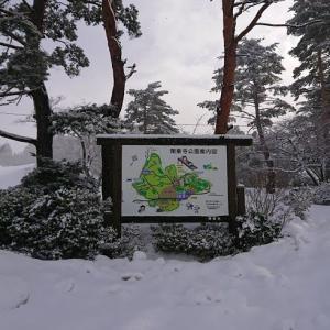 富山 閑乗寺公園にて雪遊び