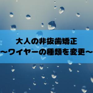 大人の非抜歯矯正~ワイヤーの種類を変更~