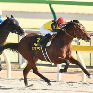 宝塚記念(GⅠ)の推奨馬をお伝えします。今回も自信あり。