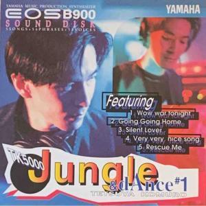 【Vol.36】YAMAHA EOSシリーズ専用ボイスカード&サウンドディスク紹介 ーTK5000ー