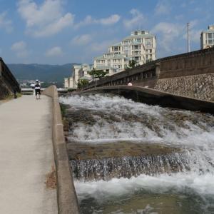 住吉川を自転車散歩