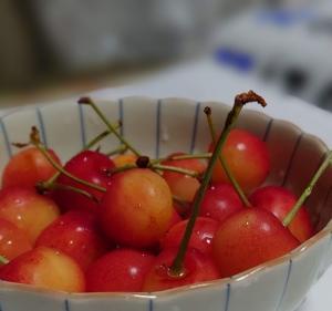 旬の果物「さくらんぼ・すいか・メロン・トマト・ぶどう」