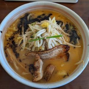 麺屋おざわ:みそらーめんとサービスの杏仁豆腐(札幌市白石区菊水6条3:2020年135杯目)