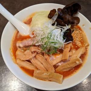 旨辛みそ+メンマ 麺や麗 36回目(千歳市高台4:2021年118杯目)
