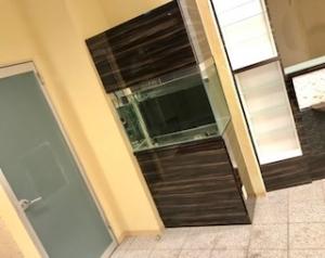 2019 11月10日 入荷 中古ガラス水槽 フルセット アマノ900(ノーザンみしま)