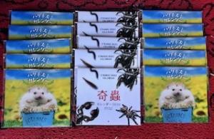 2019 12月12日 入荷 ハリネズミカレンダー 奇蟲カレンダー(ノーザンみしま)