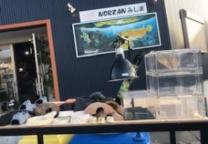 2020 2月24日 入荷 爬虫類用ケージ器具他多数(ノーザンみしま)