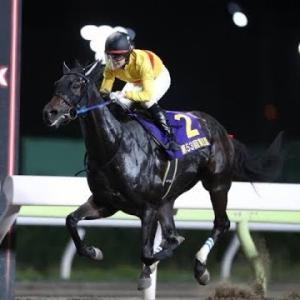 三連休最後の浦和競馬場でJBC!注目馬の紹介です。