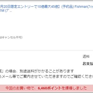 はい。Fishmanのベンダバール10.1M買いました(笑)