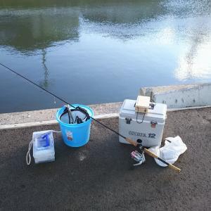 ようやく釣りシーズン