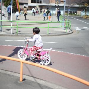 自転車保険義務化についてご質問いただきました。要注意です