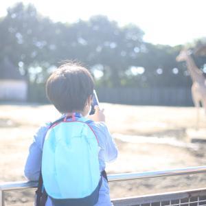 形骸化とワンマンと民主主義と公立小学校の『目的と手段』