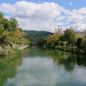 京都は路地奥がおもしろい 町屋カフェで昼呑み