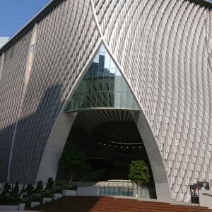 香港の新しい観光名所でベストショット