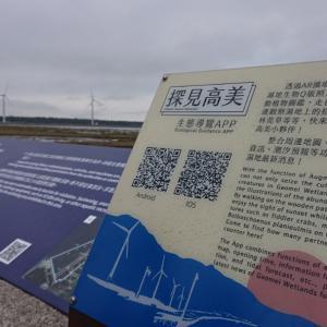 台湾のウユニ塩湖 高美湿地の絶景⁉️
