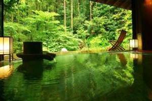 夏休みの旅行が最大半額⁉️ 国内旅行お得情報