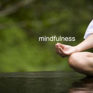 ストレス知らず‼️ オンラインマインドフルネスで脳のストレッチ