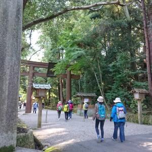 歴史好きは必見 日本最古の道