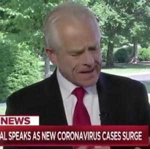 海外「ホワイトハウスの貿易顧問が中国がウイルスを生み出し世界中にばら撒いたと非難する」