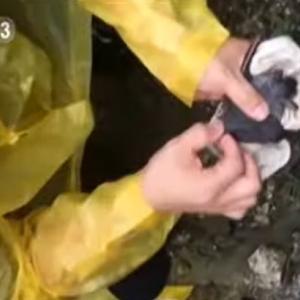 海外「コロナは武漢の科学者が防護服を着けずにコウモリに噛まれたことで広まった可能性が高い」