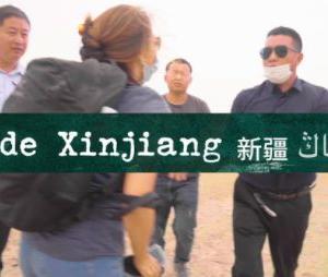 海外「中国人が新疆に来て自分の目で見てみろと言うから見に行った結果www」