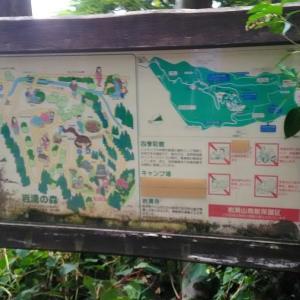 4歳の娘と岩湧山に登ってきました その2