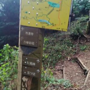 4歳の娘と岩湧山に登ってきました その4