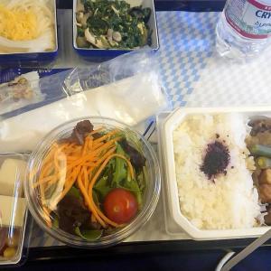 【搭乗記】ニューヨーク→羽田 ANAエコノミークラス搭乗記