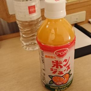 【宿泊記】松山観光で好アクセス。松山東急REIホテル!