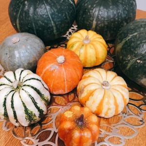 【ハロウィンレッスン】丸ごとかぼちゃグラタンを作ろう