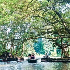 VIETNAM: A Trip Going to the Green Fields of Ninh Binh