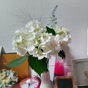 日比谷花壇のワンコイン花束続いてます