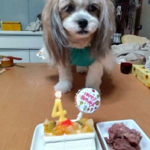 2021/6/20 ぽぽ4歳の誕生日でした