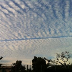 【地震速報】5日18時12分茨城県沖で地震発生 #jishin #earthquake #地震速報