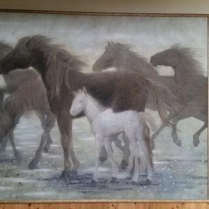 朝ドラ「なつぞら」に浮かんでくるさまざまな・・・◇拘りは夢の原点・・娘も馬好きで