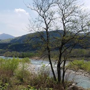 川辺の散歩◇川音・鶯の声・新緑・風の音をあなたにも