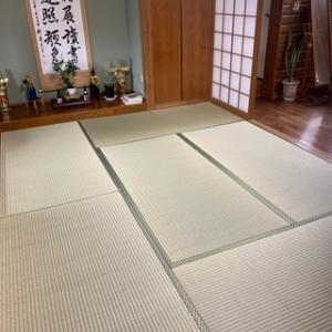 厳選したより良い畳表♪沖縄県産品に負けない高品質外国産畳表('◇')ゞ