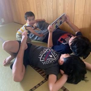 我が家の畳好き三兄弟( *´艸`)