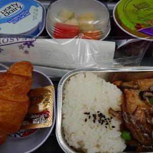 【バンコク】2019旅行記㉑:タイ国際航空(バンコク⇒成田)搭乗記。キッズミールも。