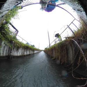 【埼玉、旧花園町】荒川中部の規模が大きな堰を見に行く。2020年6月13日(土)
