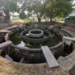【埼玉、寄居町】朝のひま散歩で、水の止まった円筒分水堰を見に行く。2020年6月16日(火)