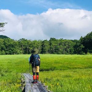 【群馬、玉原】青空の湿原と、雨のブナ平、強風のラベンダー畑、高原の円筒分水工。盛り沢山のお気楽ハイク。2020年7月12日(日)