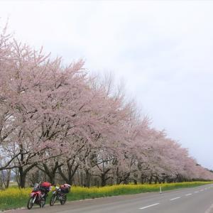 大阪~青森まで自走☆東北ソロキャンプツー!2019年GW(4日目)