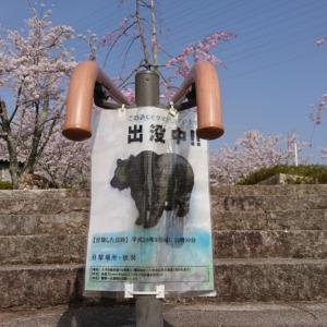 摂津峡へ登山☆