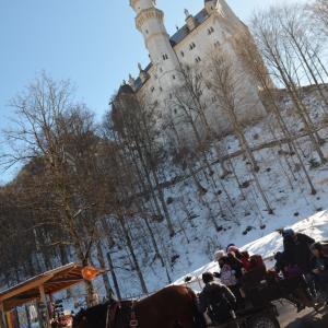 次はホーエンシュヴァンガウ城!